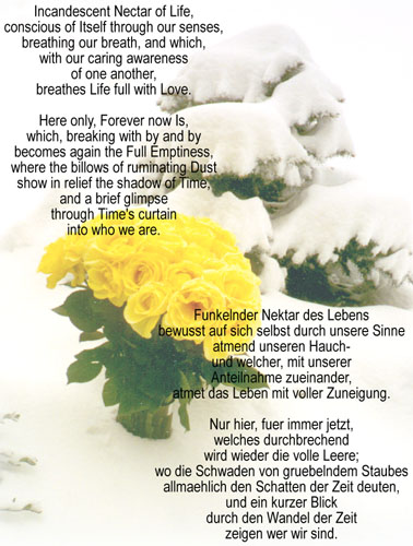 Poem, with photo of yellows roses in snow