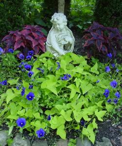 Front, Cherub garden